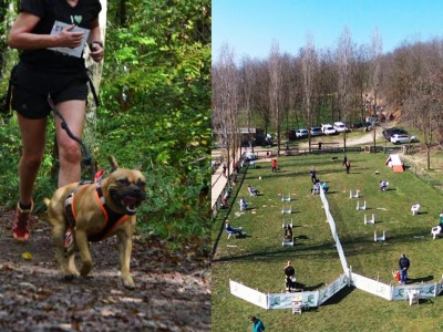 Cani-Cross & Tournoi Flyball
